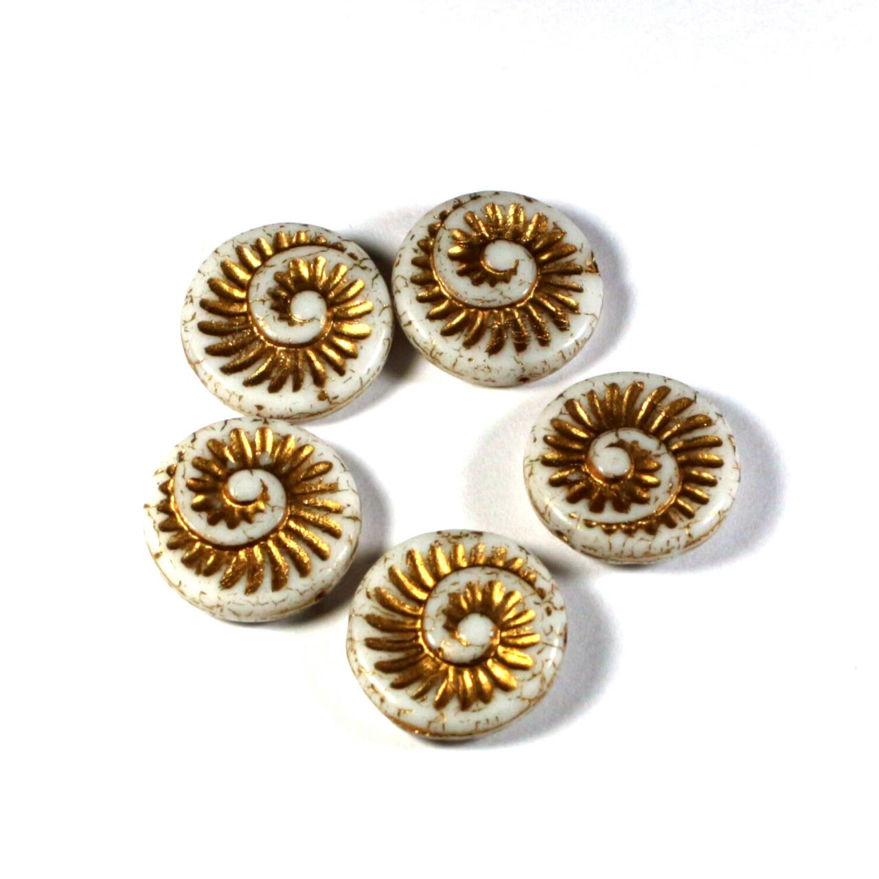 Fosilní ulity bílá zlatý zátěr
